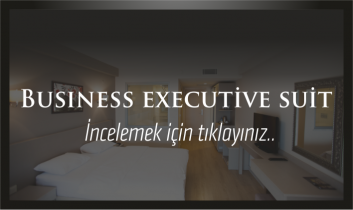 Business Exetuive Suit
